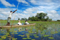 Taken on a half day trip in Okavango Delta Botswana, the Delta is the biggest sweatwater reservoir in this area and the water is absolutely clean, summer time is green season with low water, the mokoro are fiberglass replicas of dug out canoes, is easier to build than a genuine dugout, silence there is amazing