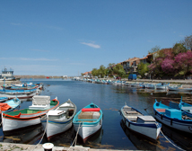 Brightly coloured fishing boats moored in Sozopol Harbour. Southern Bulgaria.
