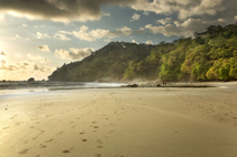 A tropical beach in Costa Rica, directly bordered by a dense jungle and mountains.