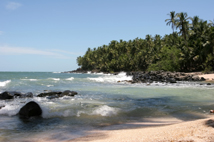 Coastal scene, French Guiana.